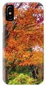 Sagamore Hill IPhone Case