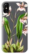 Orchid Old Print IPhone Case