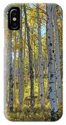 Afternoon Aspens IPhone Case
