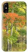 All Autumn Colors IPhone Case by Denise Bush