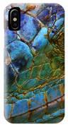 Amazing Iguana Specimen Displaying A IPhone X Case