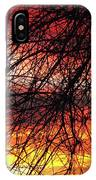 Arizona Sunset Through Branches IPhone Case