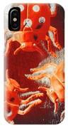 Art Deco Bug IPhone X Case