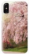 Asian Cherry Grove IPhone Case