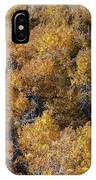 Aspen Autumn Leaves IPhone Case