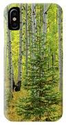 Aspen Christmas Tree IPhone Case
