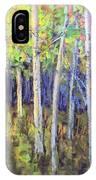 Aspen IIi IPhone Case