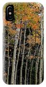 Autumn As The Seasons Change IPhone X Case