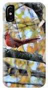 Autumn Cardinal IPhone Case