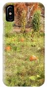 Autumn In The Pumpkin Patch IPhone Case by Alison Frank