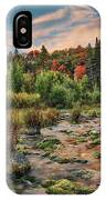 Autumn Light Reflections IPhone Case by Leland D Howard