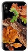 Autumn Oak Leaves And Acorns On Black IPhone Case