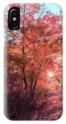 Autumn Path Reimagined IPhone Case