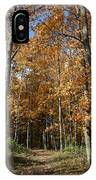 Autumn Pathway IPhone Case by Dylan Punke