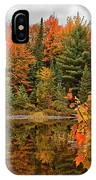 Autumn Reflections IPhone X Case