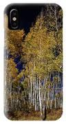 Autumn Walk In The Woods IPhone X Case