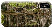 Bald Cypress Trees And Reflection, Six IPhone X Case