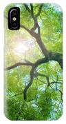 Beams Of The Sun IPhone X Case