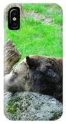 Bear Sleeping On A Rock. IPhone Case