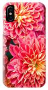 Beautiful Of Red Garden Dahlia Flower IPhone Case
