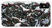 Berries And Snow IPhone Case