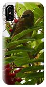 Berries And Waxwing IPhone Case