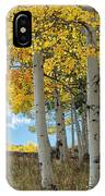 Beyond The Forest Edge IPhone Case by Denise Bush