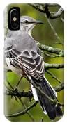 Mockingbird In Tree IPhone Case