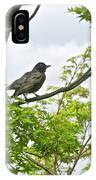 Bird Resting On Branch IPhone Case