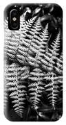 Black And White Fern IPhone Case by Louis Dallara
