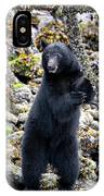 Black Bear Standing IPhone Case