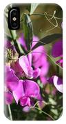 Bunch Of Pink Sweet Peas In The Sun IPhone Case