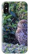 Burrowing Owl IPhone Case by Paul Schultz