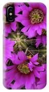 Burst Of Fuchsia Cactus Flowers IPhone Case