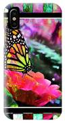 Butterflies Are Free IPhone X Case