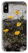 California Poppy Trying IPhone Case