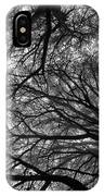 Cedars In The Mist IPhone Case