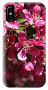 Cherry Blossoms 2019 IIi IPhone Case