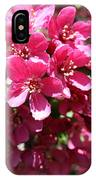Cherry Blossoms 2019 Iv IPhone Case