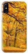 Collection Of Beautiful Colorful Autumn IPhone X Case