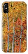 Colorful Glow Of Autumn IPhone Case by Leland D Howard