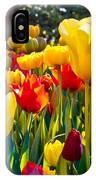 Colorful Tulips In The Park. Spring IPhone Case