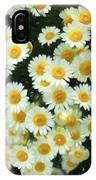 Daisy Crazy For You IPhone Case