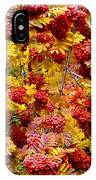 Days Of Autumn 18 IPhone Case