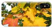 Days Of Autumn 24 IPhone Case