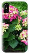 Decorative Floral Pink Hydrangeas C031619 IPhone Case by Mas Art Studio