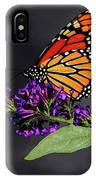 Drink Deeply Of This Moment IPhone Case