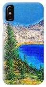 Duck Pass IPhone Case by Kevin Daly