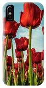 Dutch Red Tulip Field. IPhone Case by Anjo Ten Kate