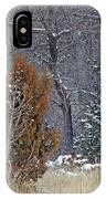 Early Winter On The Western Edge IPhone Case